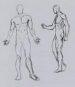 La anatomia y yo-anat56.jpg
