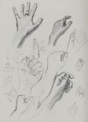 La anatomia y yo-anat59.jpg