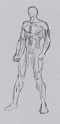 La anatomia y yo-anat63.jpg