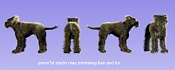 pruebas modelado daniel-perro.jpg