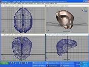como   cerrar   una malla compleja -cerebro.jpg