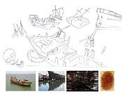 Mar de los sargazos-proceso-mar-de-los-zargasos.jpg