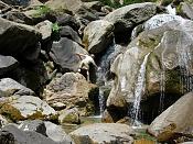 Parque natural Ordesa y Monte perdido-agua.jpg