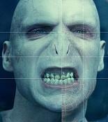 Voldemort -pic-voldemort1-1-copy.jpg