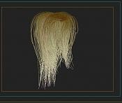 Hair and fur-pelo.jpg