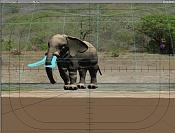 Travesia  elefante -1c.jpg