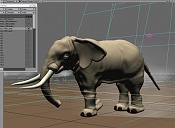 Travesia  elefante -2b.jpg