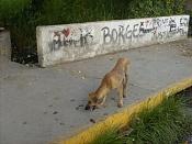 Que odisea de medicos Cubanos -hpim0331.jpg