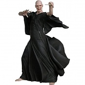 Voldemort -nc49100_voldemort.jpg