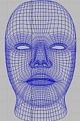 Cabeza humana realista   -wire.jpg