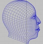 Cabeza humana realista   -perfil.jpg