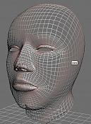 Cabeza humana realista   -perspectiva-wire.jpg