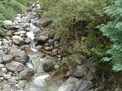 Fotos Naturaleza-dsc01212.jpg