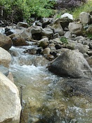 Fotos Naturaleza-dsc01227.jpg