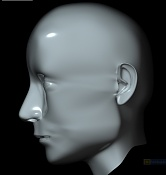 Cabeza realista de PaULa, o eso intento -cabeza-de-paula-2.jpg