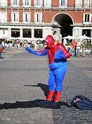 Fotos Graciosas divertidas con Humor-spiderfat_.jpg