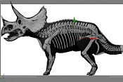 Triceratop-ajuste.jpg