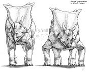 Triceratop-ceratopsian_postures_rough6.jpg