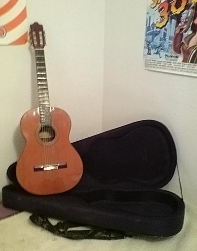 Vendo guitarra clasica alhambra 6p