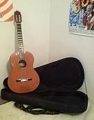 Vendo Guitarra Clasica alhambra 6P-guit_2.jpg