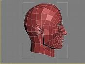 cabeza demonio -wire2.jpg