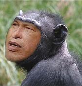 Chavez: Reflejo de un Icono Cubano e intento Hitleriano-chavez.jpg