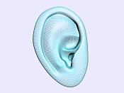 Mi primera cabeza-oreja2.jpg