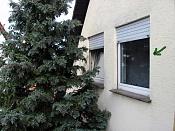 Desde mi ventana-desde-mi-ventana_por-fuera.jpg
