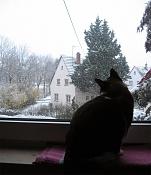 Desde mi ventana-desde-mi-ventana_marzo2007_.jpg