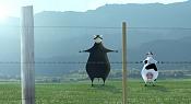 Toribio - el toro semental  -toribio.jpg