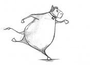 Toribio - el toro semental  -corriendo.jpg