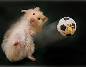 La Quiniela de 3DPoder 2006-2007-raton.jpg