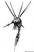 :: mosquitos ::-mchnf_sketch_03_s.jpg