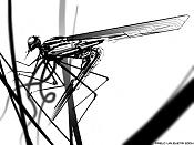 :: mosquitos ::-mchnf_sketch_05_s.jpg