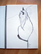 Dibujos rapidos , Bocetos  y apuntes  en papel -cuaderno-2.jpg