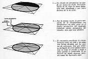 Dibujo artistico - El Pastelista-ovalo.jpg