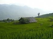 Viajes 3DPoder: DIXaN - Sudeste asia-p1000403.jpg