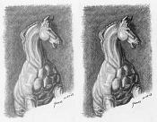 Dibujo artistico - El Pastelista-20-caballo.jpg
