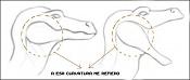 Mas avances en el Dragon  ahora un ciclo de andar -dragon2.jpg