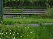 Foto_parque-parque16.jpg