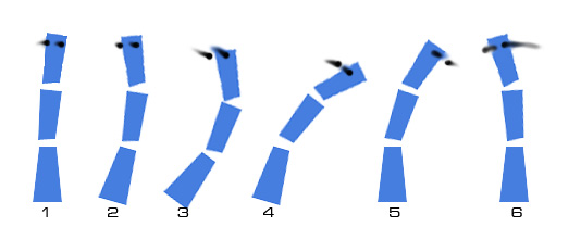 -overlap_01desglose.jpg
