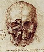 La busqueda de la perfeccion-skull2.jpg