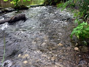 Fotos Naturaleza-plitvicka-jezera-24.jpg