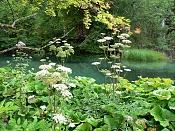Fotos Naturaleza-plitvicka-jezera-42.jpg