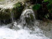 Fotos Naturaleza-plitvicka-jezera-88.jpg