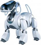 Un aibot-ers7lrg.jpg