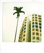 Polaroid:  donde -p4.jpg