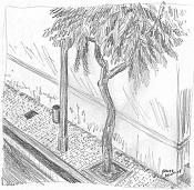 Dibujo artistico - El Pastelista-56-acera.jpg