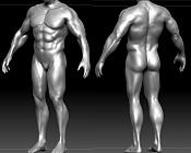 Estudio de anatomia -3.jpg