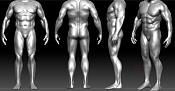 Estudio de anatomia -4.jpg